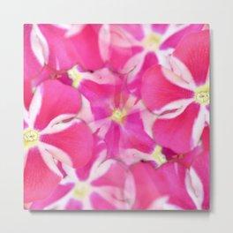 Pattern of pink flowers Metal Print
