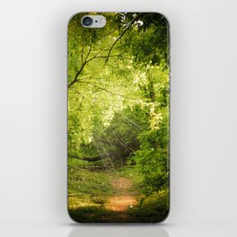 The Secret Path iPhone Skin