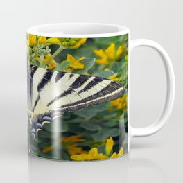 Scarce Swallowtail, Iphiclides Podalirius Coffee Mug