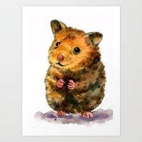 Hamster I Art Print