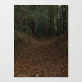 Forest Path Canvas Print