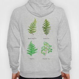 fern collection watercolor Hoody