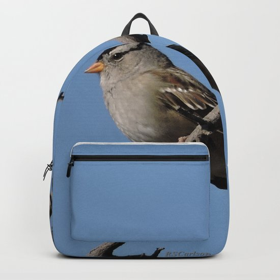 A White-Crowned Sparrow Eyes the Botanic Garden Backpack