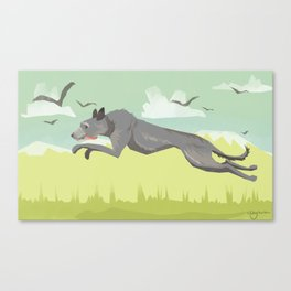 Scottish Deerhound Canvas Print
