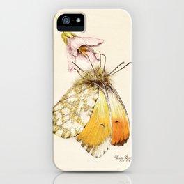 Aurorafalter butterfly iPhone Case