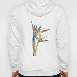 Multicoloured Botanical art - Bird of Paradise #2 Hoody