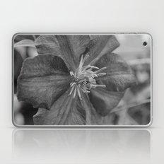 clamatis Laptop & iPad Skin