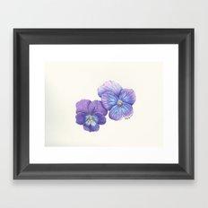 Purple Pansies Framed Art Print