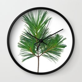 Basic Norway Pine Wall Clock