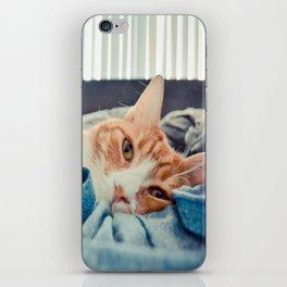 Oliver iPhone Skin