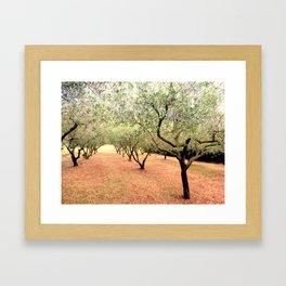 O-trees Framed Art Print