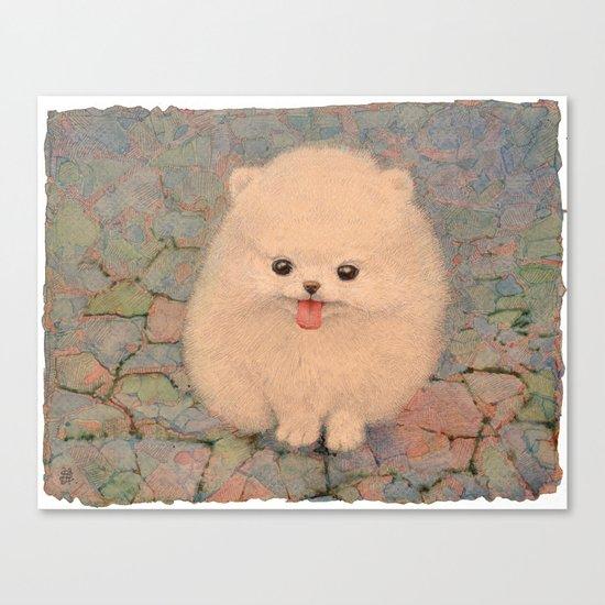 Pomeranian Canvas Print