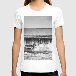 Lonely Donkey T-shirt