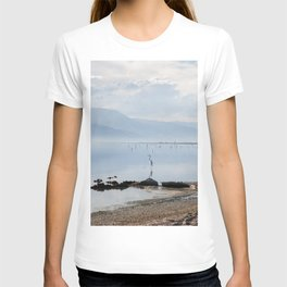 Salton Sea Lake Lanscape Coastal Beach with Sea Birds Colored Print T-shirt
