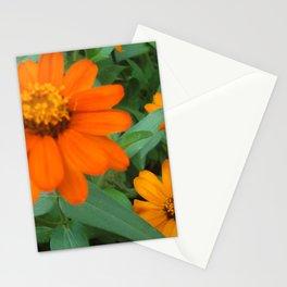 Orange Echinacea Sombrero Coneflowers Stationery Cards