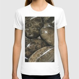 Fossilized Coral T-shirt