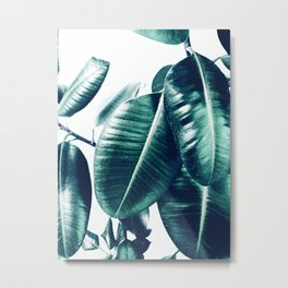 Ficus Elastica #1 Metal Print