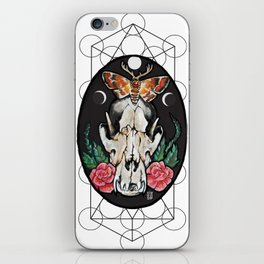 Death from above. iPhone Skin
