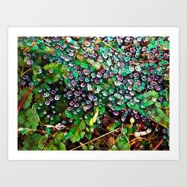 Morning Beads in the Garden Art Print