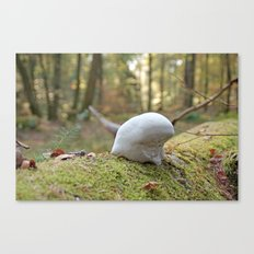 Smurf hat mushroom Canvas Print