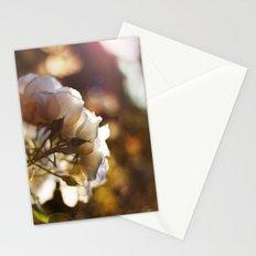 Flower Art Print - White, Peach, Yellow Print - Shabby Chic Wall Art - Home Decor -