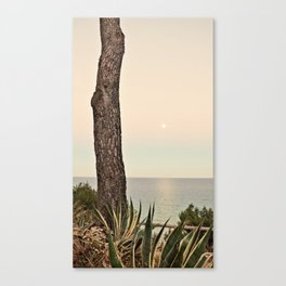 Sunset and full moon II Canvas Print