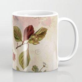 Botanical Study #1, Vintage Botanical Illustration Collage Coffee Mug