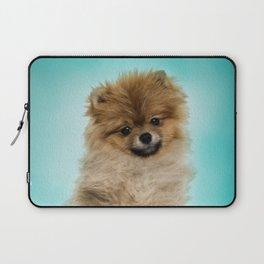Cute Pomeranian Dog Laptop Sleeve