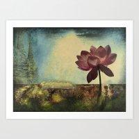 Lotus Unfolded Art Print