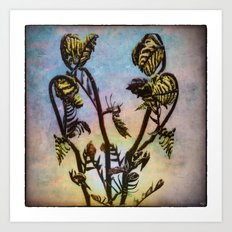 Spring Ferns Art Print