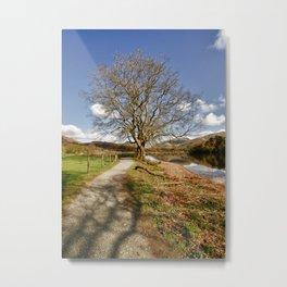 The Grasmere Tree Metal Print