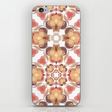 A song of fire iPhone & iPod Skin