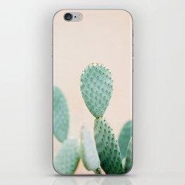 "Cactus photo print ""Botanical cactus"" Morocco | Modern Wall art | Pastel / Botanical iPhone Skin"