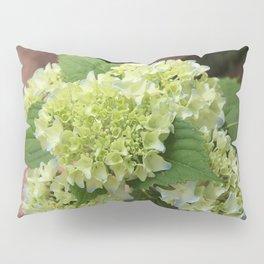 Hydrangea Walk Pillow Sham