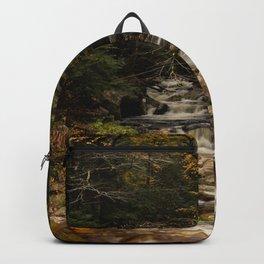 Scenic Backpack