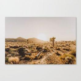 Joshua Tree VI Canvas Print