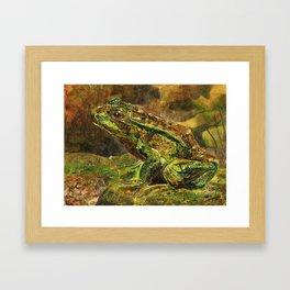 Wildlife Frog Framed Art Print