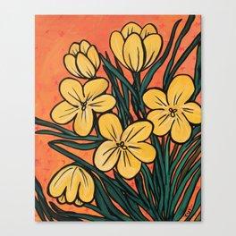 Yellow Crocuses Canvas Print