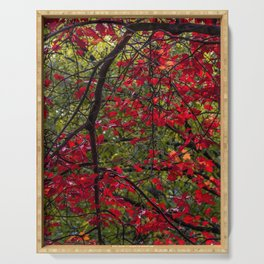 Red Autumn Serving Tray