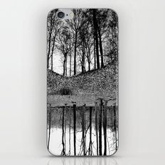 Reflection in the Wood 2 iPhone & iPod Skin