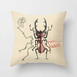 Cabinet of Curiosities No.7 Throw Pillow