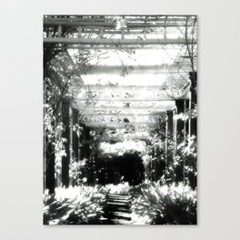Waking Dream Canvas Print