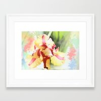 water colour Framed Art Prints featuring Water colour parrot tulip by thea walstra