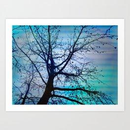 tree of wishes Art Print