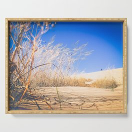 tall grass and sand at sleeping bear dunes Serving Tray