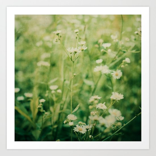 Dreams of Summer Flowers Art Print