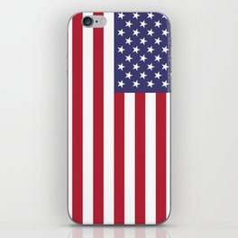 National flag of USA - Authentic G-spec 10:19 scale & color iPhone Skin