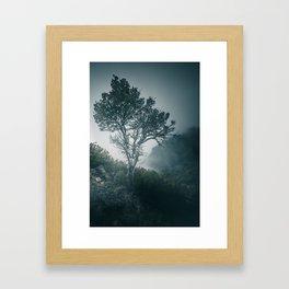 Enchanting forest 1 Framed Art Print