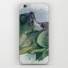 The Lone Quiltrito iPhone & iPod Skin
