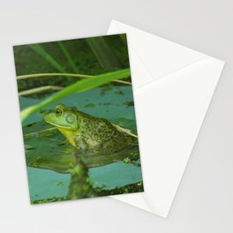 Frog Photography Print Stationery Cards